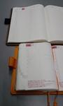 hobo_05_20081208.jpg