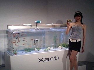 xacti_summer03_20070531.jpg