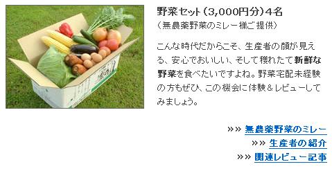 yasai_20080512.PNG